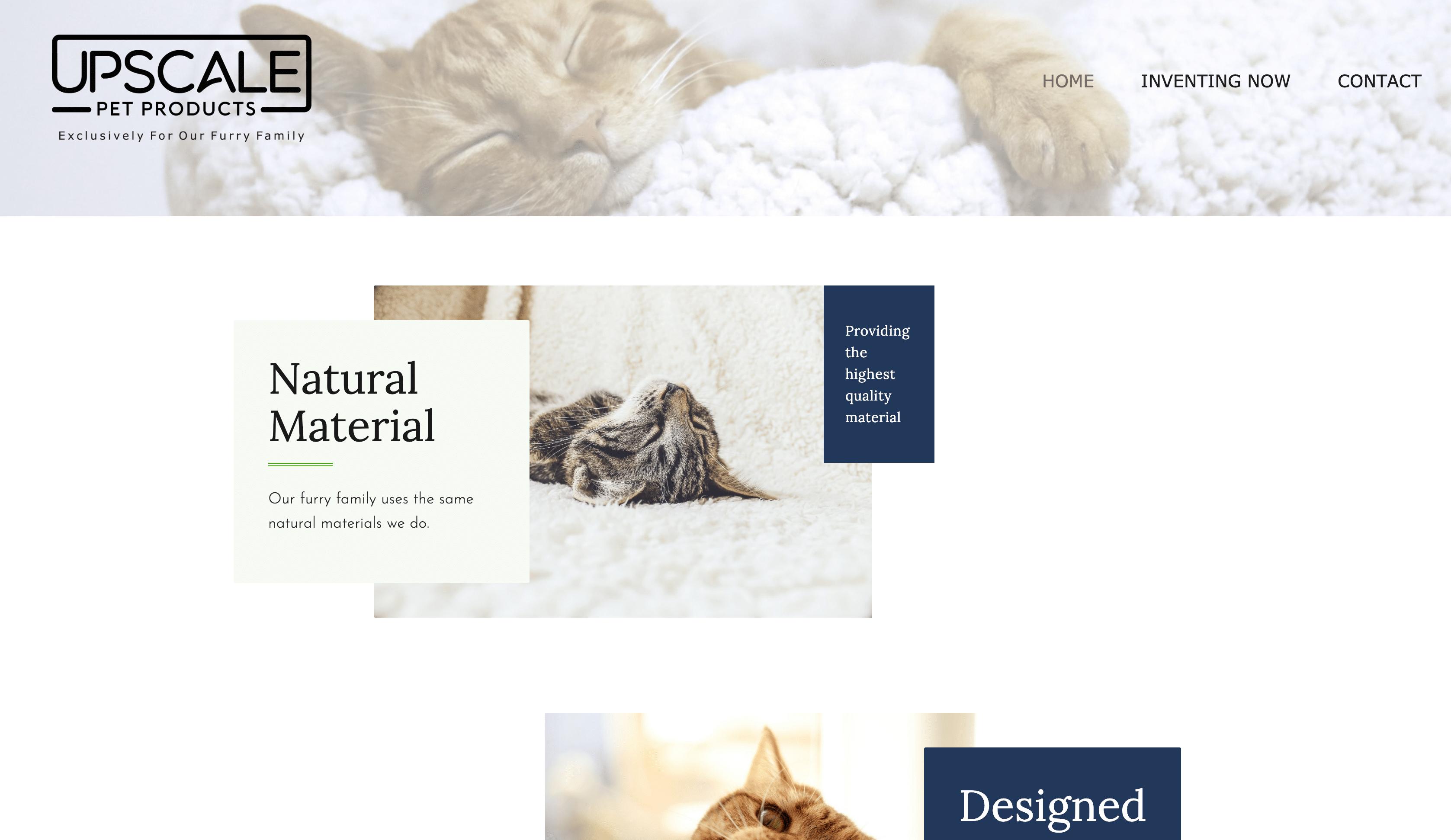 Custom Web Design And Branding
